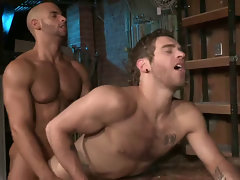 Hot blissful guys sucking coupled with going to bed